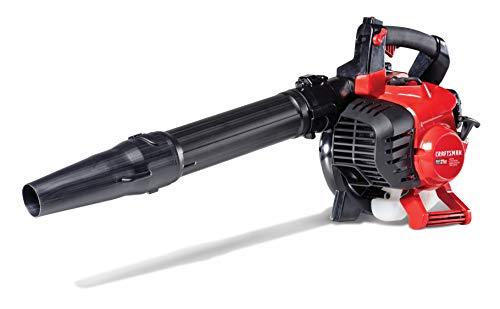 Best Gas Leaf Vacuum