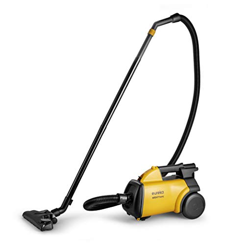 Best Budget Vacuum for Shag Carpet