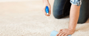 The Best 8 Carpet Stain Removers of 2021