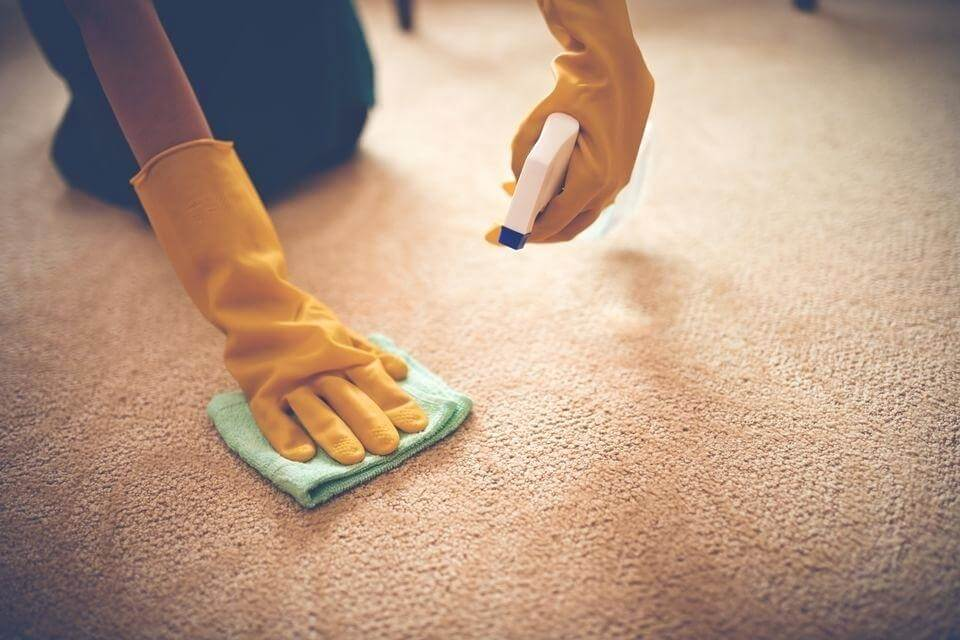Remove Coffee Stains from Carpet