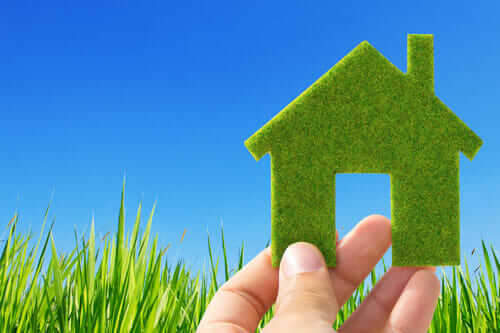 A Complete Guide to Going Green at Home in 2021