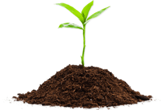 How Can I Set Up A Composting Heap Or Bin