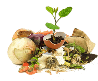 How Can I Use My Compost?