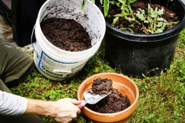 The Ultimate Guide To Composting At Home