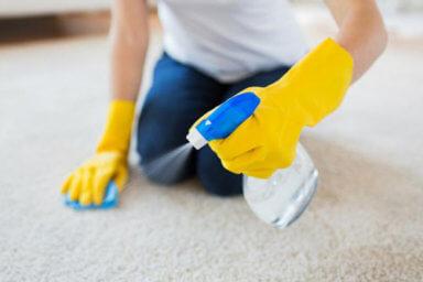 Carpet Shampoos