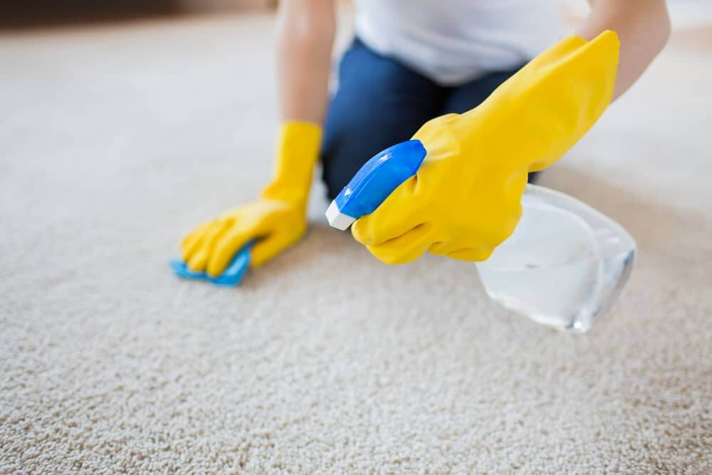 8 Powerfull Methods to Get Blood Off of the Carpet