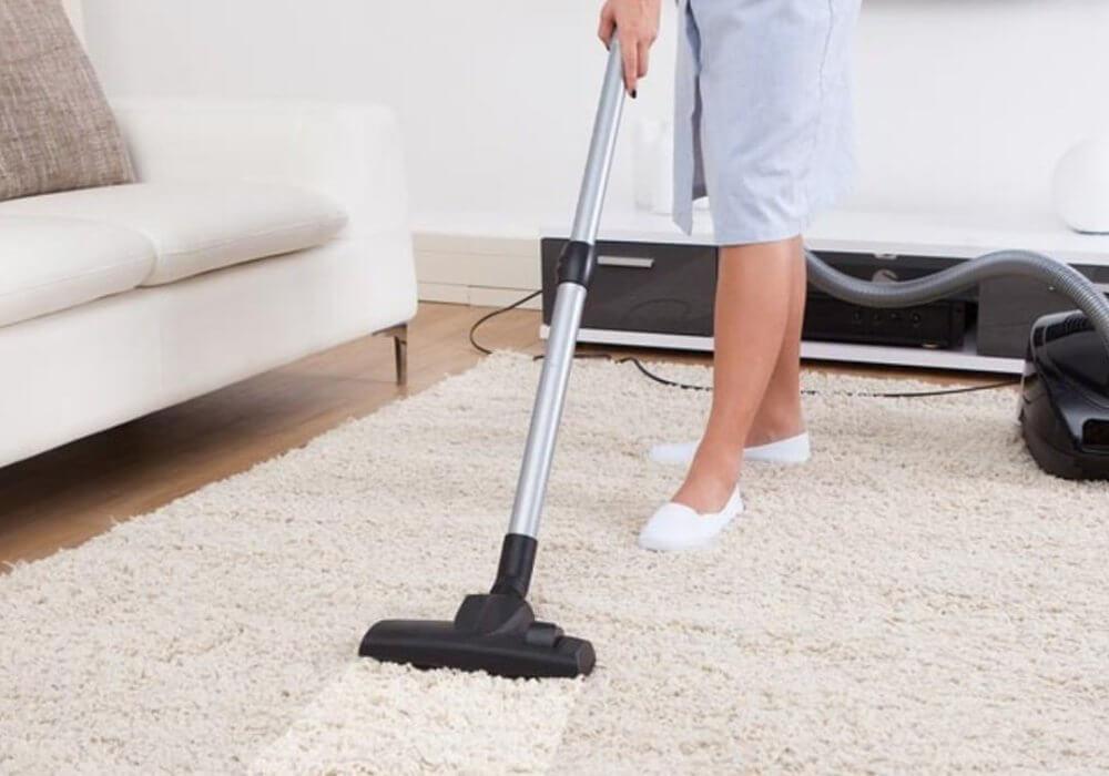 Best Carpet Vacuum Cleaners