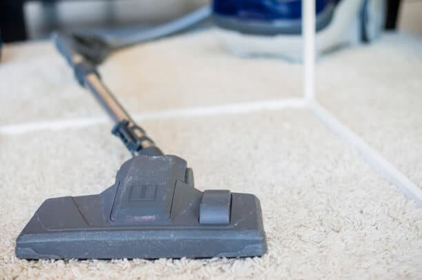 Start Steam Cleaning the Carpet