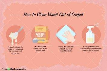 4 Amazing Methods to Clean Vomit Out of Carpet