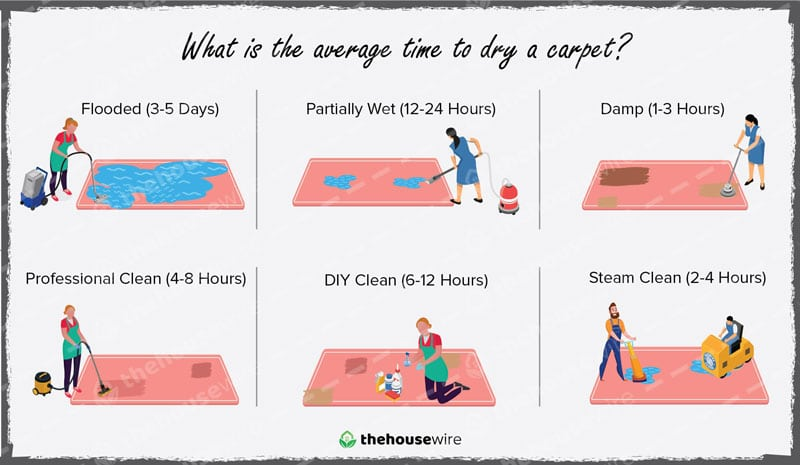 What is the Average Time to Dry a Carpet