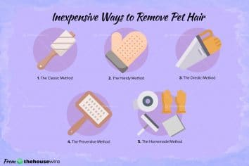 5 Inexpensive Ways To Remove Pet Hair