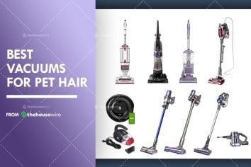 The 9 Best Vacuums For Pet Hair of 2021