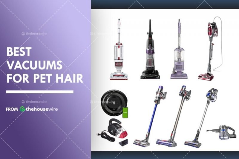 The 9 Best Vacuums For Pet Hair Of 2020