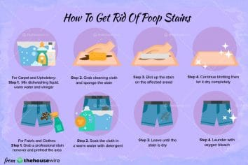 how-to-get-rid-of-poop-stain